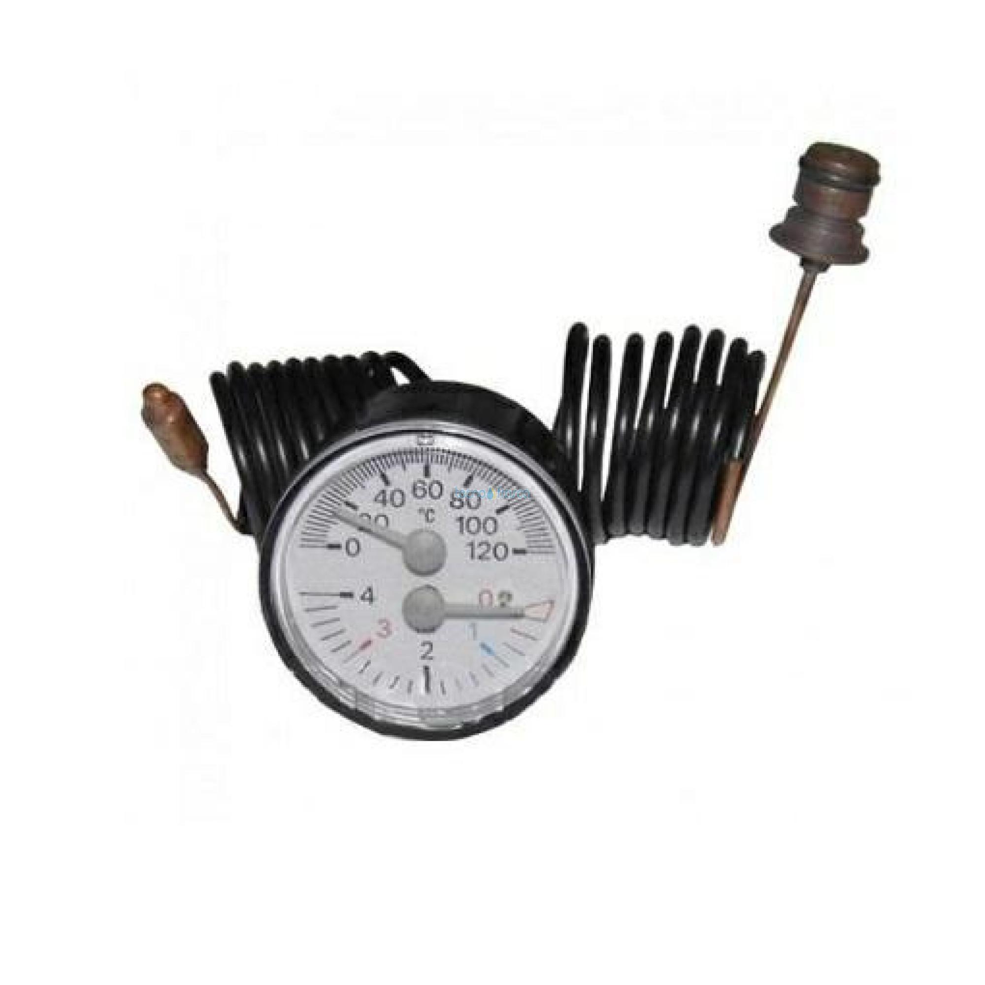 Sylber termoidrometro 0-120 r10026051
