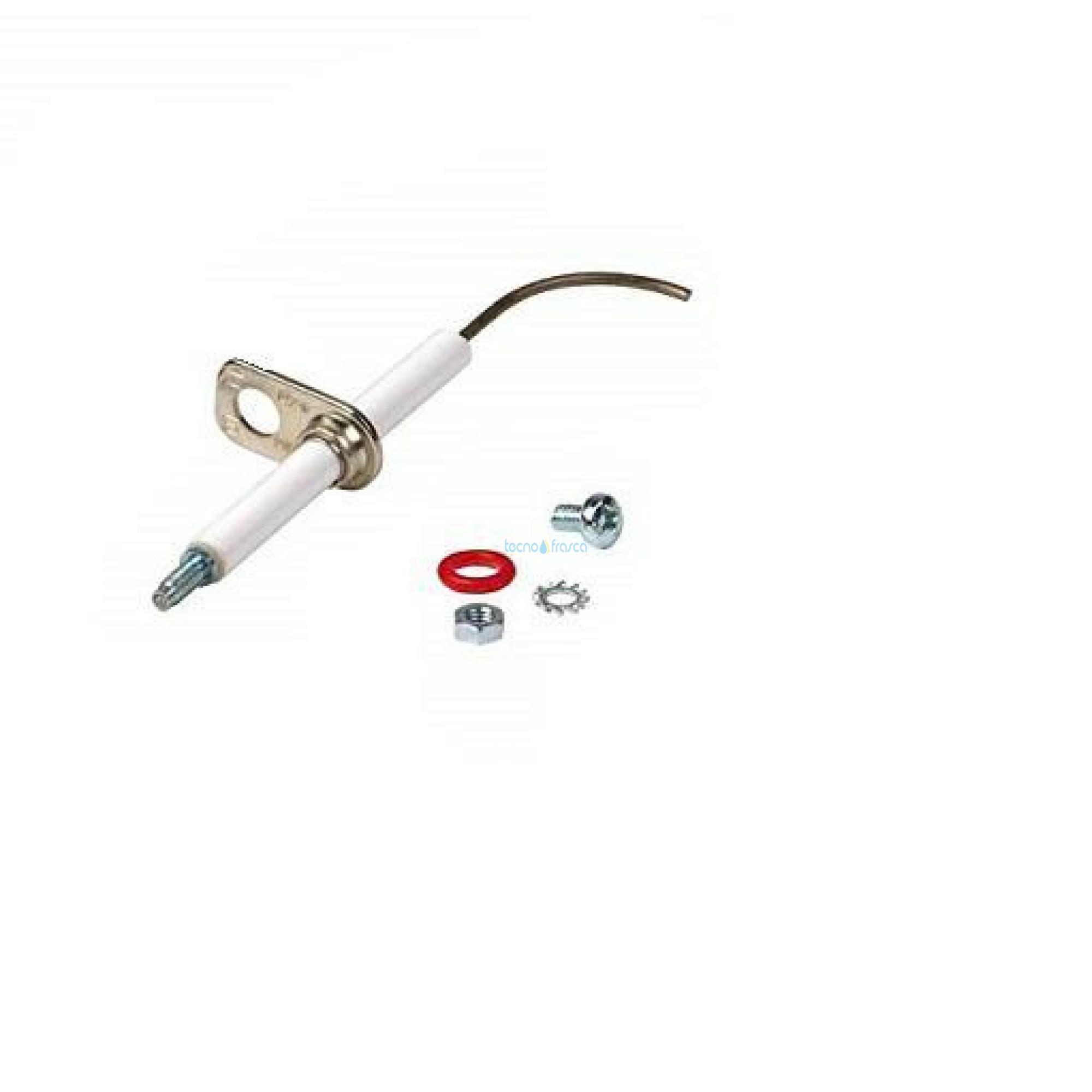 Sylber elettrodo di rilevazione r10026316