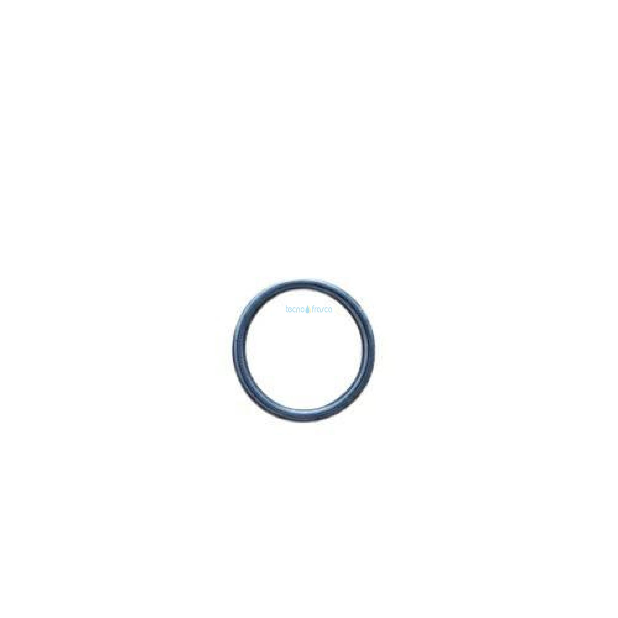 Sylber anello di tenuta r10026324